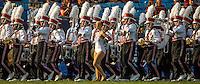 Sports action photography of the South Carolina Gamecocks v. North Carolina TarHeels in the Belk College Kickoff at Bank of America Stadium in Charlotte, N.C., on Thursday, Sept. 3, 2015. South Carolina won, 17-13.<br /> <br /> Charlotte Photographer - PatrickSchneiderPhoto.com