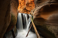 Waterfall with ladder in Kanarra Creek. Utah. Dixie National Forest