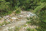 The river in the rainforest near Santa Maria Jalatengo in the Sierra Madre del Sur Mountains of Oaxaca, Mexico.