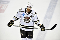 HERSHEY, PA - DECEMBER 01: Hershey Bears left wing Liam O'Brien (20) rests during a time out during the Springfield Thunderbirds at Hershey Bears on December 1, 2018 at the Giant Center in Hershey, PA. (Photo by Randy Litzinger/Icon Sportswire)