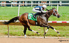 Jerry n' Elvis winning at Delaware Park on 7/10/13