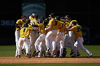 The Missouri Tigers celebrate following their walk-off win over the Oklahoma Sooners in game four of the 2020 Shriners Hospitals for Children College Classic at Minute Maid Park on February 29, 2020 in Houston, Texas. The Tigers defeated the Sooners 8-7. (Brian Westerholt/Four Seam Images)