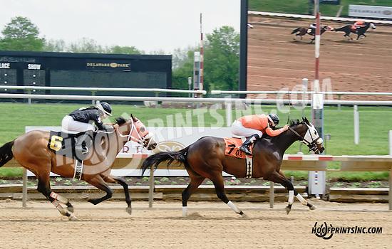 Crimson Pride winning at Delaware Park racetrack on 5/17/14
