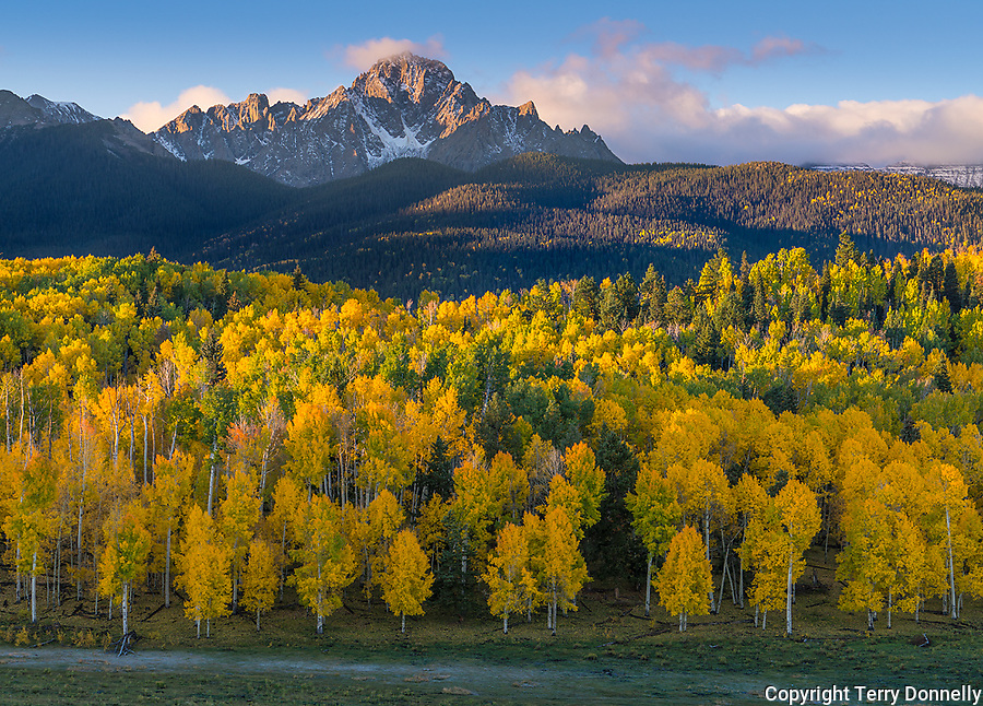 Uncompahgre National Forest, Colorado: Fall colors with Mt. Sneffels in the distance