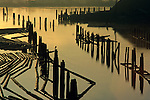 Sunrise over slough with silhouetted pilings and lumber on waterway with silhouetted heron, Everett, Washington State USA.