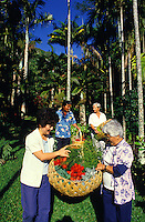 Gathering of flowers for wreath making at the Lyon Arboretum in Manoa Valley