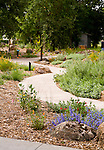 Nathanson Creek park