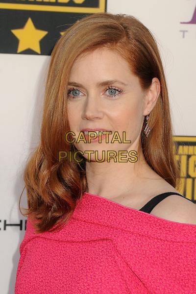 LOS ANGELES, CA - JANUARY 16:  - Amy Adams. 19th Annual Critics' Choice Movie Awards held at Barker Hangar. <br /> CAP/ADM/BP<br /> &copy;Byron Purvis/AdMedia/Capital Pictures