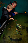 Tourists in the Aquarium in Port Isaac, Cornwall, U.K.<br />
