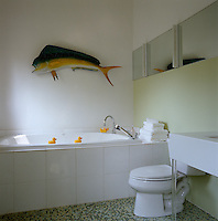 A model fish on the wall of this contemporary bathroom keeps an eye on the rubber ducks patrolling the rim of the bath