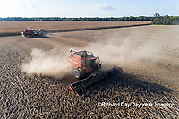 63801-13416 Harvesting soybeans in fall-aerial  Marion Co. IL