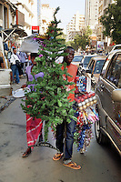 Senegal. Dakar. Town centre. A man sells in the street a plastic Christmas tree, made in China. Traffic jam. Congested road. 10.12.09  © 2009 Didier Ruef