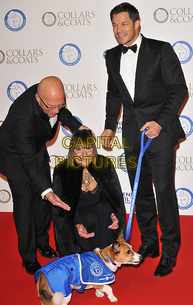 Nicky Johnston, Hilary Alexander &amp; Paul Sculfor attend the Collars &amp; Coats Gala Ball 2015, Battersea Evolution, Battersea Park, London, England, UK, on Thursday 12 November 2015. <br /> CAP/CAN<br /> &copy;CAN/Capital Pictures