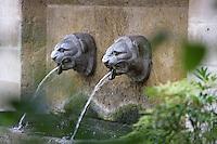 Fountain depicting a feline head, Ile de la Cité, Paris, France Picture by Manuel Cohen