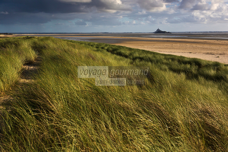 Europe/France/Normandie/Basse-Normandie/50/Baie du Mont-Saint-Michel/Env de Genêts:  Dunes de Dragey // Europe/France/Normandie/Basse-Normandie/ Bay of Mont Saint Michel, listed as World Heritage by UNESCO,l/ Genêts: Dragey Dunes