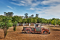 Abandoned old car at the mansion Citrus of Kampos in Chios island, Greece