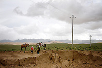 Desertification is increasing on the shores of Qinghai Lake, China's largest inland body of water which lies at over 3000m on the Qinghai-Tibetan Plateau. The lake has been shrinking in recent decades, as a result of increased water-usage for local agriculture. Qinghai Province. China. 2010