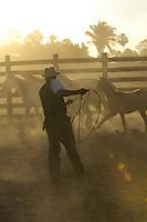 Cowboy work, Pantanal, Brazil.