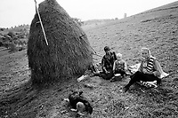 ROMANIA / Maramures / Valeni / September 2003..A family picnics in a field while cutting the last hay for the season...© Davin Ellicson / Anzenberger..