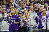 Indianapolis, IN - December 1, 2018: Northwestern Wildcats fans cheer during the Big Ten championship game between Northwestern  and Ohio State at Lucas Oil Stadium in Indianapolis, IN.   (Photo by Elliott Brown/Media Images International)