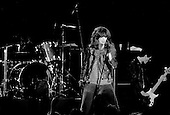 "Denver, Colorado<br /> USA<br /> May 9, 1983<br /> <br /> Front man of the Ramones singer: Joey Ramone (center), and basist: Dee Dee Ramone.<br /> <br /> The Ramones were an American rock band that formed in Forest Hills, Queens, New York in 1974, often cited as the first punk rock group. Despite achieving only limited commercial success, the band was a major influence on the punk rock movement both in the United States and the United Kingdom.<br /> <br /> All of the band members adopted pseudonyms ending with the surname ""Ramone"", though none of them were actually related. They performed 2,263 concerts, touring virtually nonstop for 22 years. In 1996, after a tour with the Lollapalooza music festival, the band played a farewell show and disbanded.<br /> <br /> By a little more than eight years after the breakup, the band's three founding members--lead singer Joey Ramone, guitarist Johnny Ramone, and bassist Dee Dee Ramone--had all died."