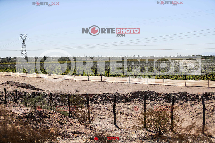 Vineyard field between Caborca and<br /> Puerto Peñasco, Sonora, October 20, 2017.-<br /> <br /> Campo de viñedo entre Caborca y <br /> Puerto Peñasco, Sonora, 20 de octubre de 2017.-