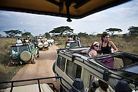 Tourists in safari vehicles.