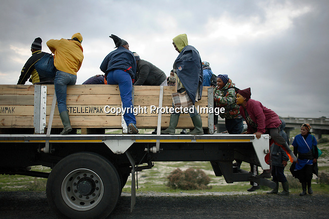 Women boards a truck to work in the vine industry in Stellenbosch outside Cape Town. Many people are unemployed and they work as causal workers often getting paid around $12 per day. Photo by: Per-Anders Pettersson/Getty Images for Smithsonian magazine.
