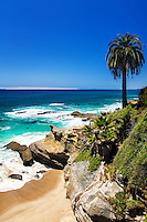 The Coast Of Laguna Beach California