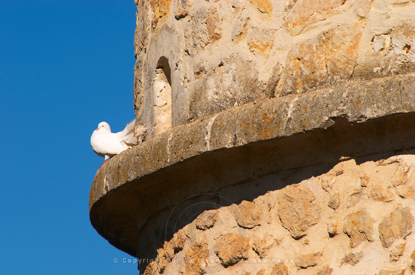 A white dove standing on a ledge of an old stone dovecote dove house against a clear blue sky - Chateau Carignan, Premieres Cotes de Bordeaux