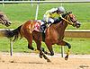 Salt On Top winning at Delaware Park on 6/3/2017