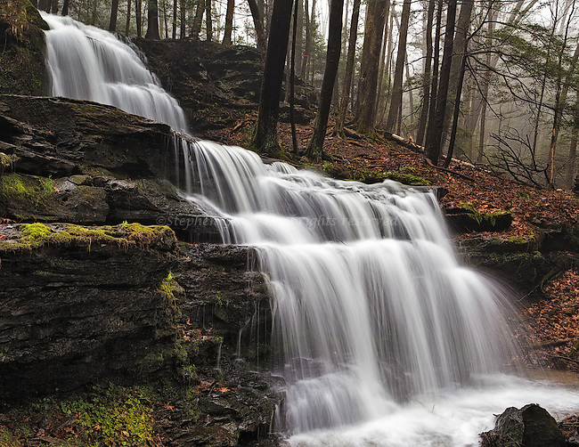 Springtime Fog and an overcast sky gives Gunn Falls a moody feel.