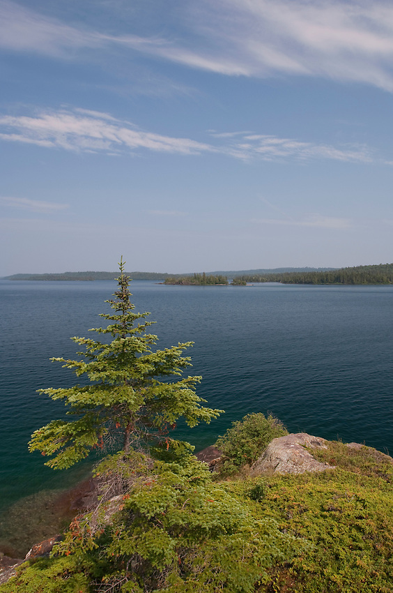 A tree clings to the rugged Lake Superior shoreline at Isle Royale National Park.
