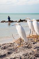 Caspersen Beach, Florida, USA
