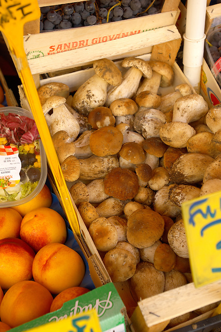 Fruit & Vegetable Stall - Porcini Mushrooms ; Market - Chioggia - Venice Italy