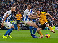 Brighton &amp; Hove Albion's Shane Duffy (left) battles with Wolverhampton Wanderers' Diogo Jota (right) <br /> <br /> Photographer David Horton/CameraSport<br /> <br /> The Premier League - Brighton and Hove Albion v Wolverhampton Wanderers - Saturday 27th October 2018 - The Amex Stadium - Brighton<br /> <br /> World Copyright &copy; 2018 CameraSport. All rights reserved. 43 Linden Ave. Countesthorpe. Leicester. England. LE8 5PG - Tel: +44 (0) 116 277 4147 - admin@camerasport.com - www.camerasport.com