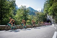 Team Jumbo-Visma controlling the peloton<br /> <br /> Stage 16 from La Tour-du-Pin to Villard-de-Lans (164km)<br /> <br /> 107th Tour de France 2020 (2.UWT)<br /> (the 'postponed edition' held in september)<br /> <br /> ©kramon