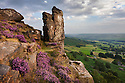 The Pinnacle Stone on Curbar Edge surrounded by flowering heather. Peak District National Park, Derbyshire, UK. August.