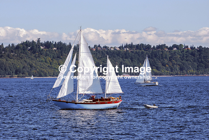 Yachts sailing on the Puget Sound, near Seattle, Washington State, USA, 200809060991..Copyright Image from Victor Patterson, 54 Dorchester Park, Belfast, N Ireland, BT9 6RJ...Tel: +44 28 9066 1296.Mob: +44 7802 353836.Email: victorpatterson@mac.com..IMPORTANT: Go to www.victorpatterson.com and click on Terms & Conditions