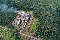 Luftbildaufnahme einer Raffinerie von Oepalmen, Kimbe, Neubritannien, Papua Neuguinea, PNG / Arial View from a Refinery of a Oil palm, Kimbe, New Britain, Papua New Guinea, PNG