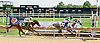 Cayman Croc winning at Delaware Park on 8/13/14