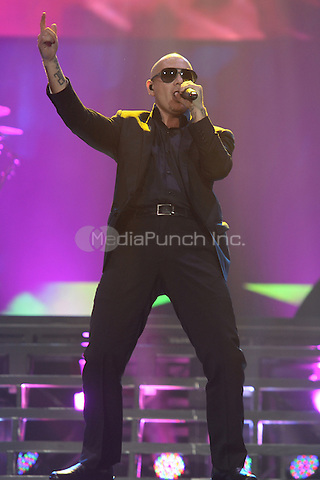 HOLLYWOOD FL - OCTOBER 25 : Pitbull performs at Hard Rock Live held at the Seminole Hard Rock Hotel & Casino on October 25, 2014 in Hollywood, Florida. Credit: mpi04 / MediaPunch