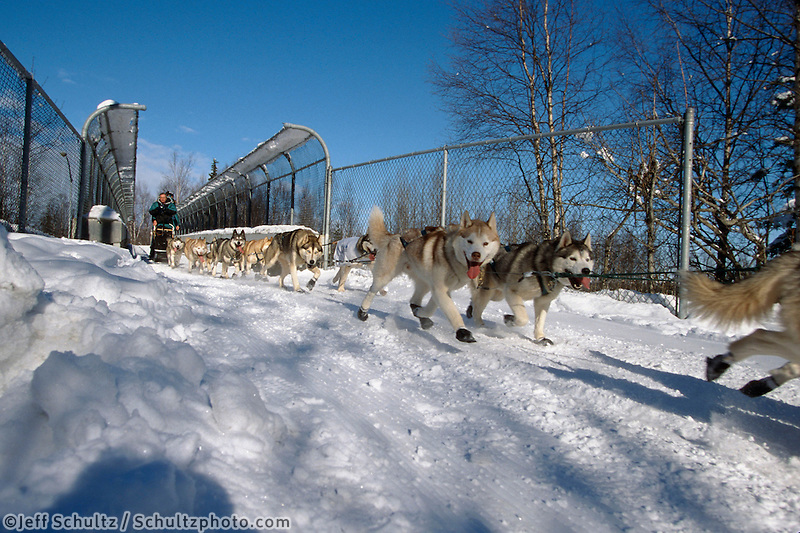 W.Curtis on Pedestrian Bridge Anchorage.Iditarod 2004