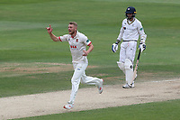 Jamie Porter of Essex celebrates taking the wicket of Steven Patterson during Essex CCC vs Yorkshire CCC, Specsavers County Championship Division 1 Cricket at The Cloudfm County Ground on 9th July 2019