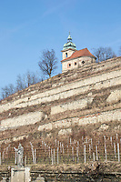 wine slopes at Libechov Castle in Libechov the czech republic