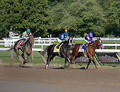 The 2011 Alabama Stakes
