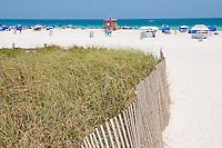 Fence And Grass near Miami Beach SoBe Entrance