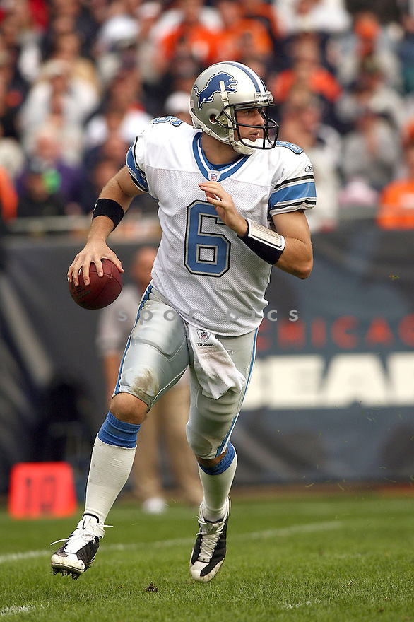 DAN OLOVSKY, of the Detroit Lions in action against the Chicago Bears during the Lions game in Chicago, Illinois on November 2, 2008..Bears win 27-23