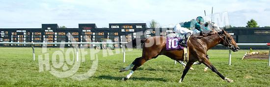 Insider Tip winning at Delaware Park on 9/2/09