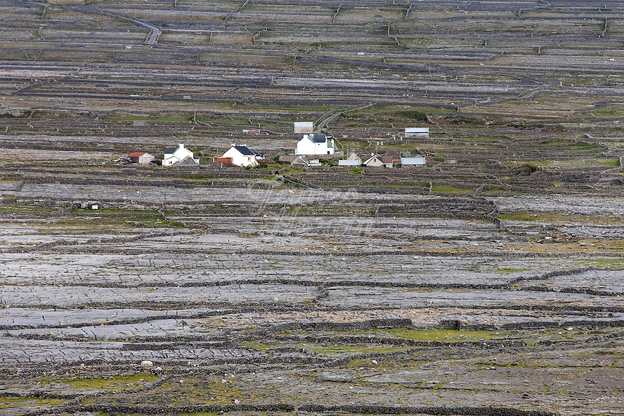 Farm Houses and stone walls, Inis Mór, Aaran Islands, County Galway, Ireland..The island of Inis Mór ( meaning the big island) is one of the most popular tourist destinations in Ireland. The islands inland landscape of uniquely blanketed rock surface are glazed with man made rock walls that meander and cross all directions as far as one can see. Well known internationally, it is steeped in history and resembles an outdoor museum with over 50 different monuments of Christian, pre Christian and Celtic mythological heritage. Picture James Horan